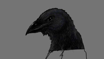 Crow by Trydning
