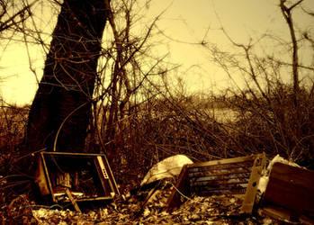 Fallout by Adopusina