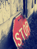 stop right now by millie369