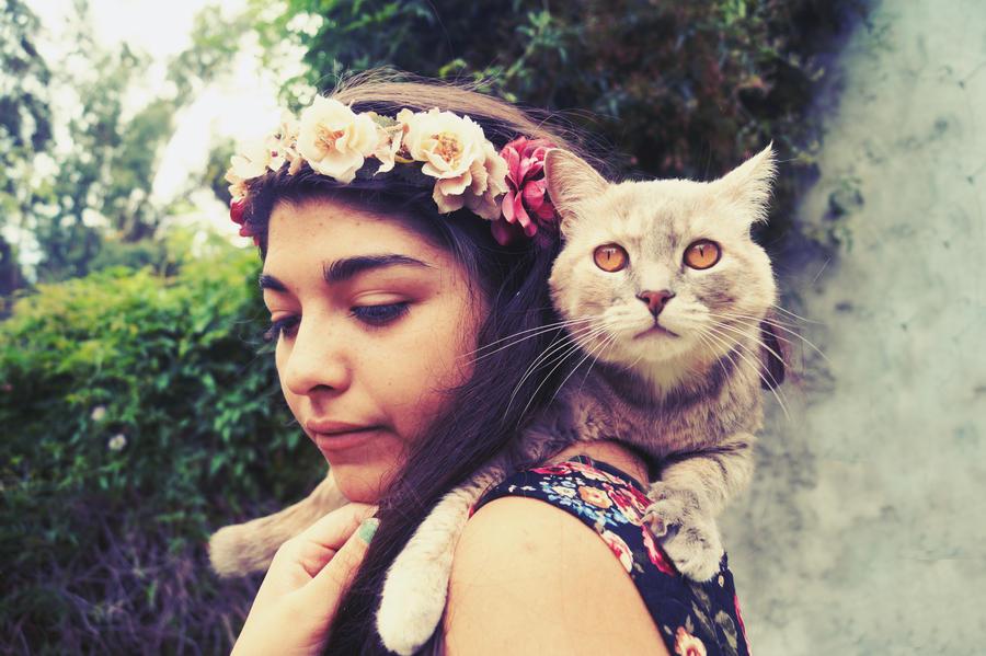 Queens by Arsmara
