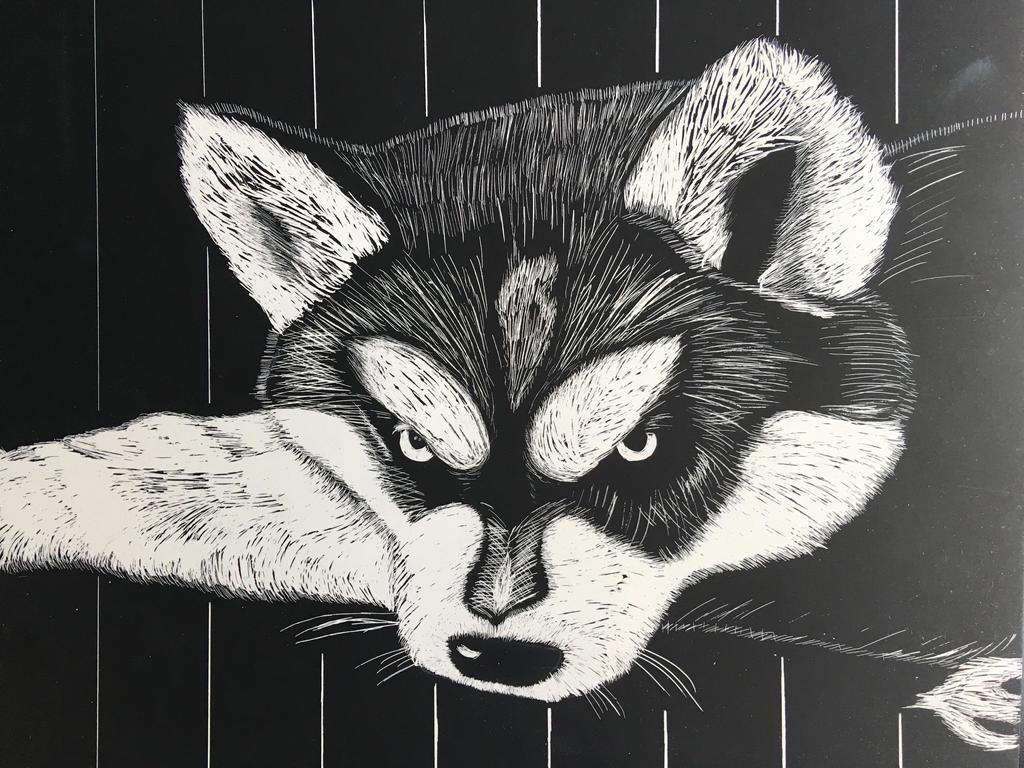 Husky Scratch Art by OtakuFreak14