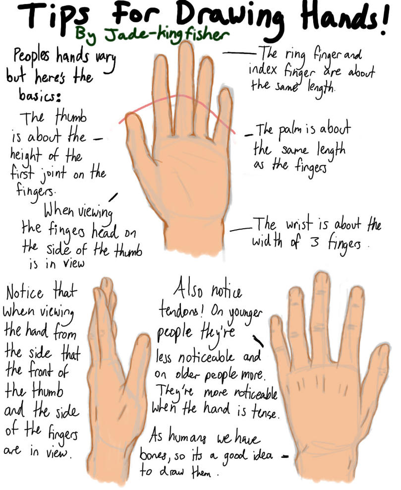tips on drawing hands by JadeKingfisher on DeviantArt