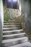 Steps4 by NickiStock
