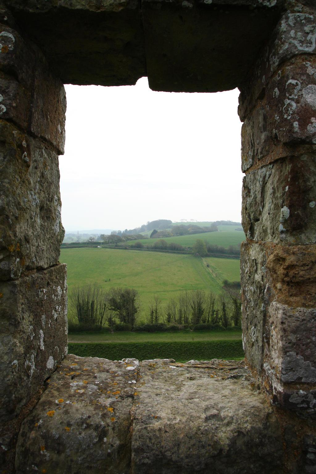 Castle window by NickiStock