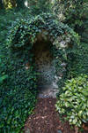 Ivy hide out.