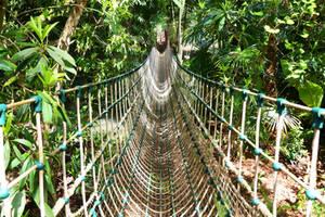 Rope Walkway- Stock Image