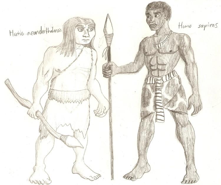 Neanderthal Human Comp...