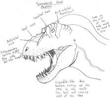 Tyrannosaurid Facial Anatomy by TyrannoNinja