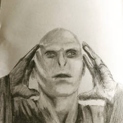 Lord Voldemort  by Lilolila8