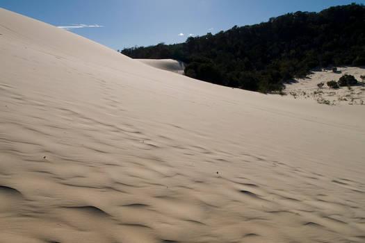 tangalooma sand dunes 04