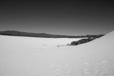 tangalooma sand dunes 05