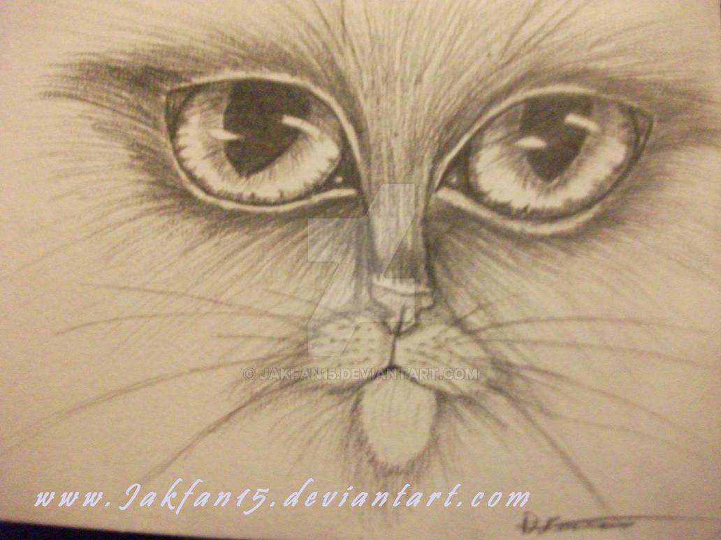My Big Eyes by Jakfan15