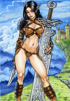 Castle Guard by Snigom