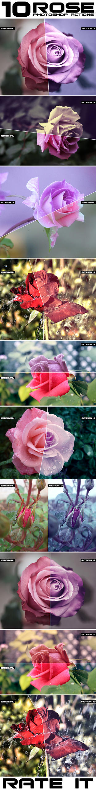 Rose Flower Photoshop Actions by Grugle