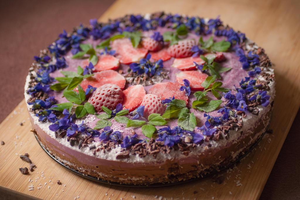 Spring raw cake by Luisa-Puschelova-7