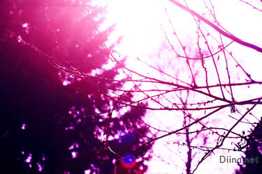Purple World by Diinax3