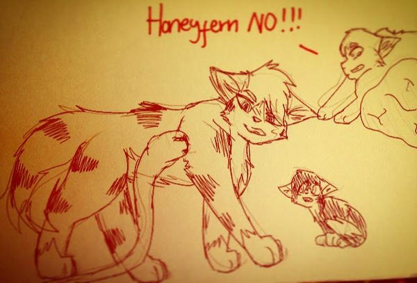 Honeyfurn No!! by squeak10jan