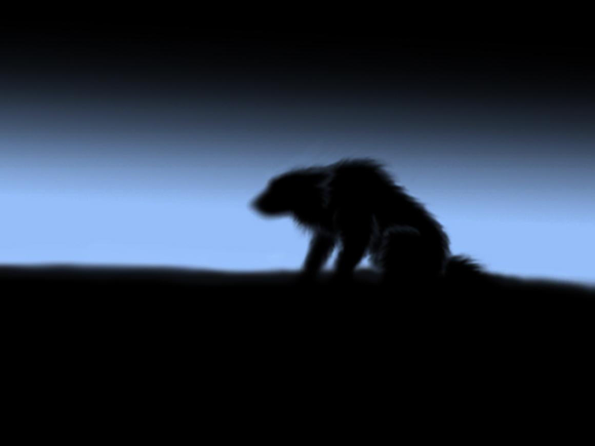 Sad Lonely Wolf by Volfeyed on DeviantArt