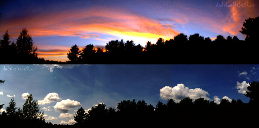 Panorama Love by AntoinetteLeChat