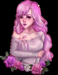 Pink Rose by akifune