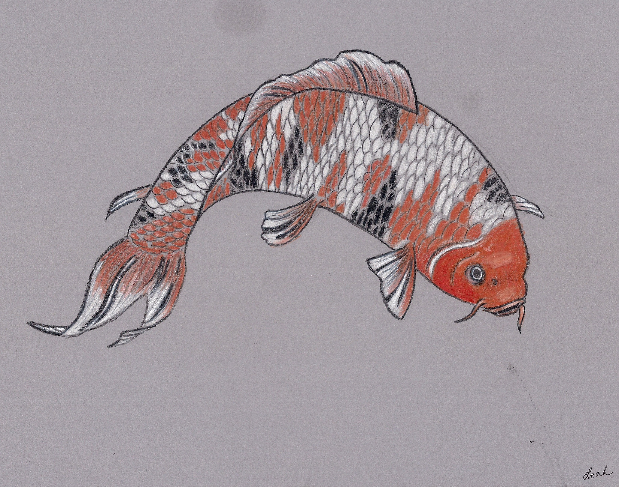 Koi fish pencil drawing by sailorhorizon on deviantart for Koi fish net