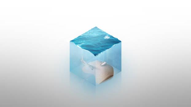 Watercube - a design concept