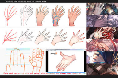 Drawing hands: male vs female by kawacy