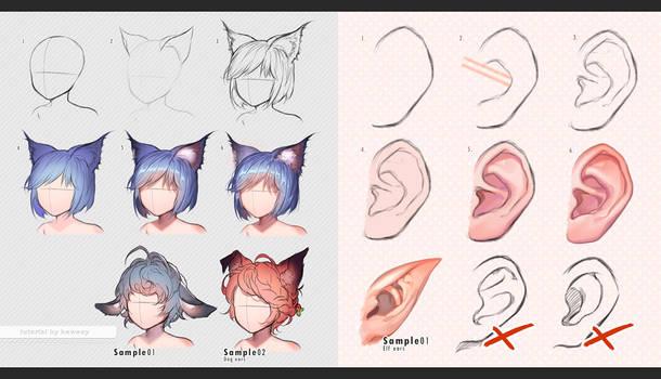Human vs Beast ears