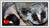 bushbaby stamp by LoversSuicide