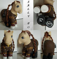 My little Pony Custom Sally Po
