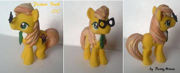 My little Pony Blind Bag Custom Picture Book OC by BerryMouse