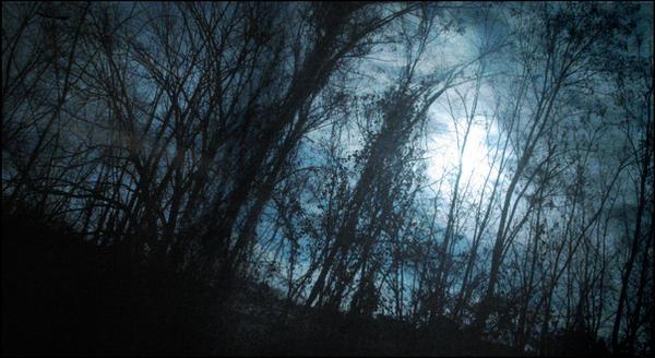 La Selva Oscura by laether-mad