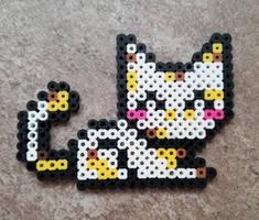 Kitten by JasonYoungdale