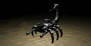 Scorpion by JasonYoungdale