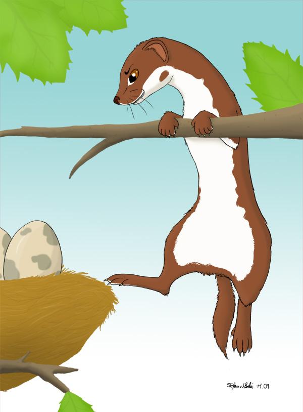 Egg-Thief by Wieselfan