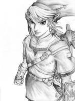 The Legend of Zelda by MeyLi27