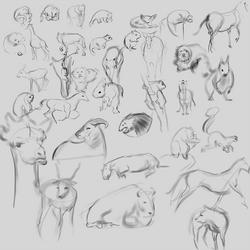 quick draws