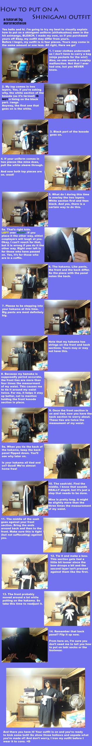 How to put on a shihakushou by AuroraCelsius