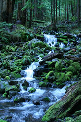 Cascading Falls 2 by indigohippie