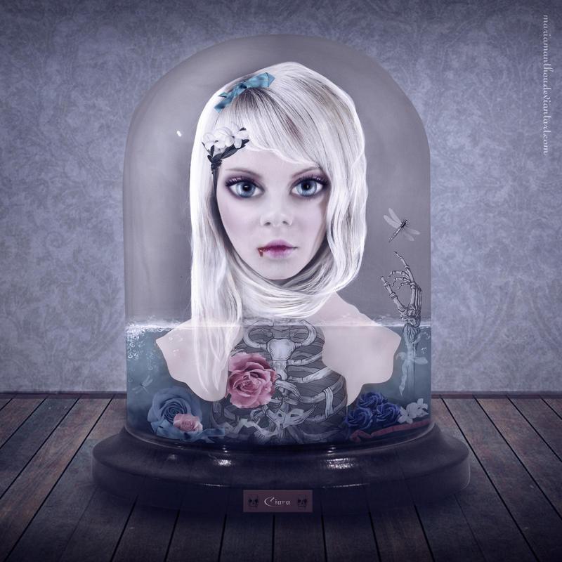 Jar of Heart by mariaig