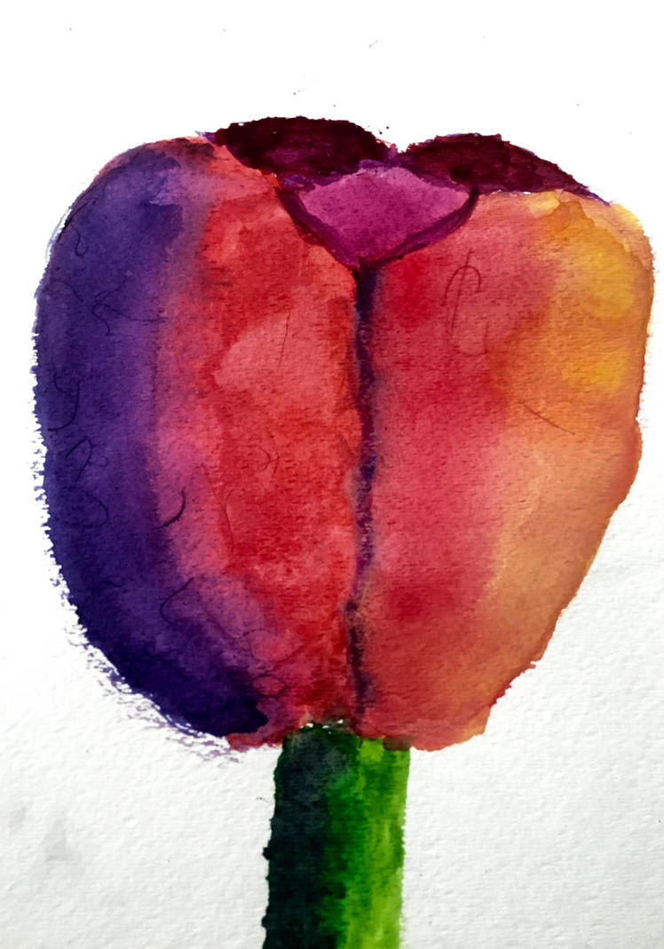 Water Color Flawer by R-Wild-R on DeviantArt