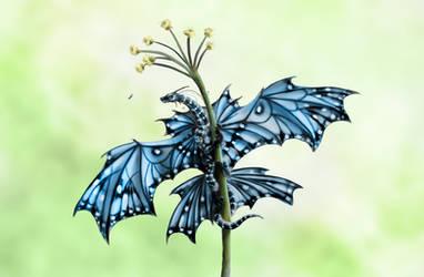Little Blue Angel by MonikaZagrobelna