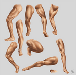 Male leg and foot STUDY
