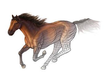 Color shading exercise - paint a horse by MonikaZagrobelna