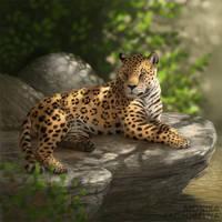 In the jungle by MonikaZagrobelna
