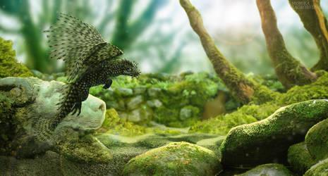 Bristlenose dragon by MonikaZagrobelna