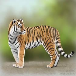 Amur tiger (+tutorial) by MonikaZagrobelna