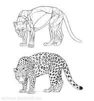 I've created an animal anatomy course!