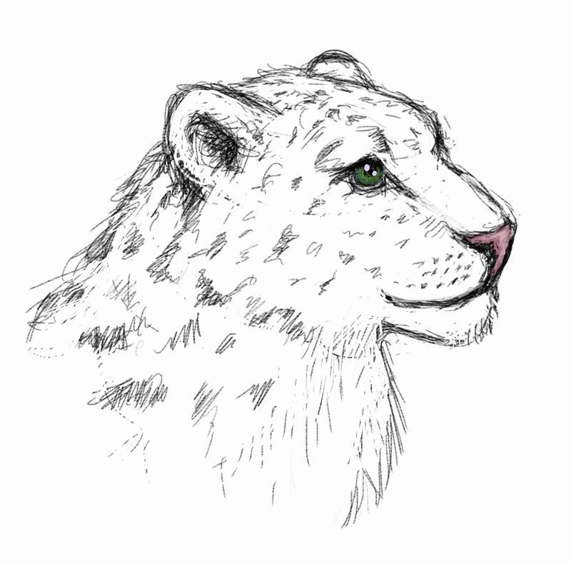 Snow leopard with tourmaline eyes by Crysomandiaz