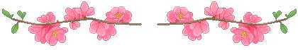 Flower divider full